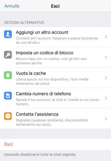 Telegram si aggiorna: arrivano gli account multipli su iOS e la riproduzione automatica dei video