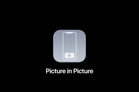 Picture in Picture iOS 14- Pan | Evosmart.it